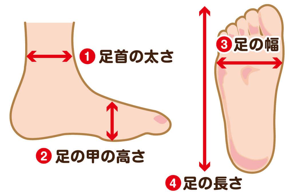 着物博士_正しい足袋の選び方_足のサイズ